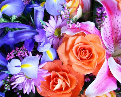 A cool, calming blend of blue, pink and purple flowers